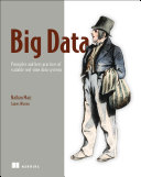 Big Data Book Cover