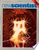 5 Mar 1981